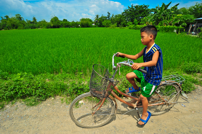 A boy rides his bicycle next to a rice field in the Philippines. With acid soils affecting half the world's current arable land, acid-beating crop varieties will help farmers feed their families – and the world – into the future.