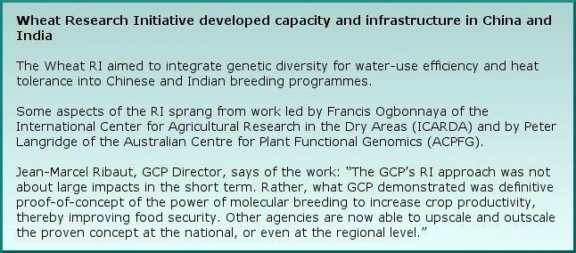 "Wheat Research Initiative developed capacity and infrastructure in China and India The Wheat RI aimed to integrate genetic diversity for water-use efficiency and heat tolerance into Chinese and Indian breeding programmes. Some aspects of the RI sprang from work led by Francis Ogbonnaya of the International Center for Agricultural Research in the Dry Areas (ICARDA) and by Peter Langridge of the Australian Centre for Plant Functional Genomics (ACPFG). Jean-Marcel Ribaut, GCP Director, says of the work: ""The GCP's RI approach was not about large impacts in the short term. Rather, what GCP demonstrated was definitive proof-of-concept of the power of molecular breeding to increase crop productivity, thereby improving food security. Other agencies are now able to upscale and outscale the proven concept at the national, or even at the regional level."""