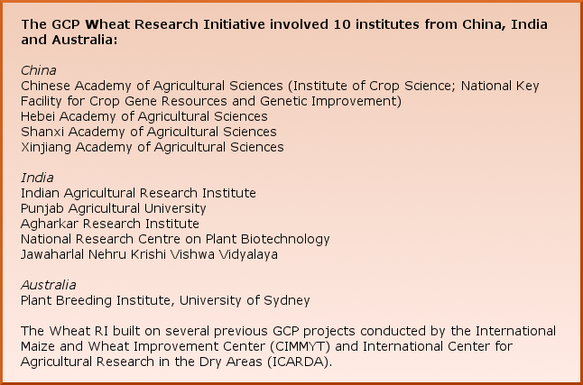 The GCP Wheat Research Initiative involved 10 institutes from China, India and Australia: China – Chinese Academy of Agricultural Sciences (Institute of Crop Science; National Key Facility for Crop Gene Resources and Genetic Improvement) Hebei Academy of Agricultural Sciences Shanxi Academy of Agricultural Sciences  Xinjiang Academy of Agricultural Sciences India – Indian Agricultural Research Institute Punjab Agricultural University Agharkar Research Institute  National Research Centre on Plant Biotechnology Jawaharlal Nehru Krishi Vishwa Vidyalaya Australia – Plant Breeding Institute, University of Sydney The Wheat RI built on several previous GCP projects conducted by the International Maize and Wheat Improvement Center (CIMMYT) and International Center for Agricultural Research in the Dry Areas (ICARDA).