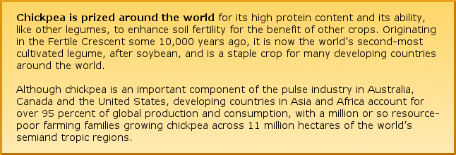Chickpea is prized around the world for its high protein content and its ability, like other legumes, to enhance soil fertility for the benefit of other crops. Originating in the Fertile Crescent some 10,000 years ago, it is now considered the world's second-most cultivated legume, after soybean, and is a staple crop for many developing countries around the world.  Although chickpea is an important component of the pulse industry in Australia, Canada and the United States, developing countries in Asia and Africa account for over 95 percent of global production and consumption, with a million or so resource-poor farming families growing chickpea across 11 million hectares of the world's semiarid tropic regions.