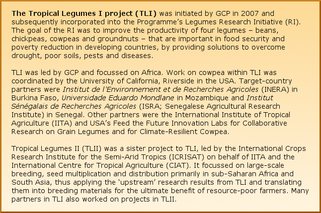 The Tropical Legumes I project (TLI) was initiated by GCP in 2007 and subsequently incorporated into the Programme's Legumes Research Initiative (RI). The goal of the RI was to improve the productivity of four legumes – beans, chickpeas, cowpeas and groundnuts – that are important in food security and poverty reduction in developing countries, by providing solutions to overcome drought, poor soils, pests and diseases. TLI was led by GCP and focussed on Africa. Work on cowpea within TLI was coordinated by the University of California, Riverside in the USA. Target-country partners were Institut de l'Environnement et de Recherches Agricoles (INERA) in Burkina Faso, Universidade Eduardo Mondlane in Mozambique and Institut Sénégalais de Recherches Agricoles (ISRA; Senegalese Agricultural Research Institute) in Senegal. Other partners were the International Institute of Tropical Agriculture (IITA) and USA's Feed the Future Innovation Labs for Collaborative Research on Grain Legumes and for Climate-Resilient Cowpea. Tropical Legumes II (TLII) was a sister project to TLI, led by the International Crops Research Institute for the Semi-Arid Tropics (ICRISAT) on behalf of IITA and the International Centre for Tropical Agriculture (CIAT). It focussed on large-scale breeding, seed multiplication and distribution primarily in sub-Saharan Africa and South Asia, thus applying the 'upstream' research results from TLI and translating them into breeding materials for the ultimate benefit of resource-poor farmers. Many partners in TLI also worked on projects in TLII.