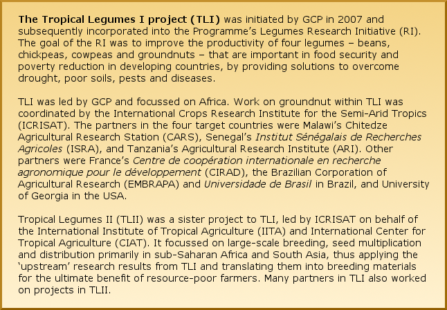 The Tropical Legumes I project (TLI) was initiated by GCP in 2007 and subsequently incorporated into the Programme's Legumes Research Initiative (RI). The goal of the RI was to improve the productivity of four legumes – beans, chickpeas, cowpeas and groundnuts – that are important in food security and poverty reduction in developing countries, by providing solutions to overcome drought, poor soils, pests and diseases. TLI was led by GCP and focussed on Africa. Work on groundnut within TLI was coordinated by the International Crops Research Institute for the Semi-Arid Tropics (ICRISAT). The partners in the four target countries were Malawi's Chitedze Research Station, Senegal's Institut Sénégalais de Recherches Agricoles (ISRA), and Tanzania'sAgricultural Research Institute (ARI). Other partners were France's Centre de coopération internationale en recherche agronomique pour le développement (CIRAD), the Brazilian Corporation of Agricultural Research (EMBRAPA) and Universidade de Brasil in Brazil, and University of Georgia in the USA. Tropical Legumes II (TLII) was a sister project to TLI, led by ICRISAT on behalf of the International Institute of Tropical Agriculture (IITA) and International Center for Tropical Agriculture (CIAT). It focussed on large-scale breeding, seed multiplication and distribution primarily in sub-Saharan Africa and South Asia, thus applying the 'upstream' research results from TLI and translating them into breeding materials for the ultimate benefit of resource-poor farmers. Many partners in TLI also worked on projects in TLII.